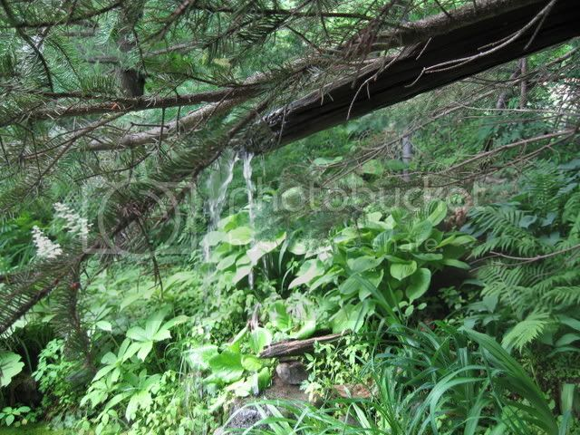 Ma visite au Jardin d'o (chez Pollito et Valentine) Photojuin2008018
