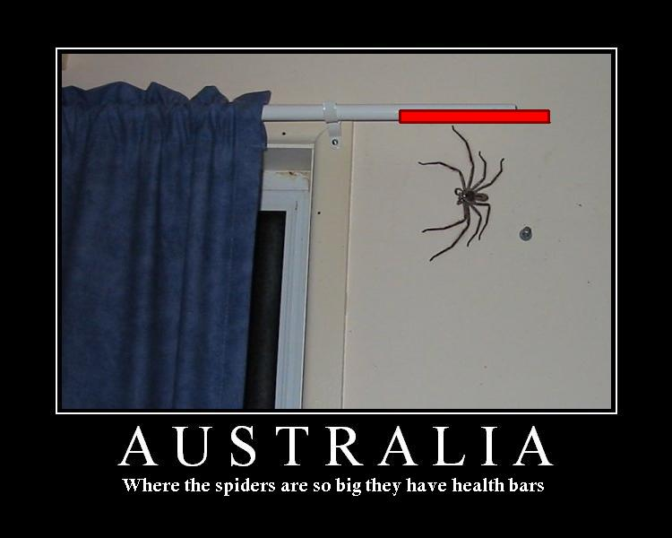 Funny Pics etc... - Page 2 Australia