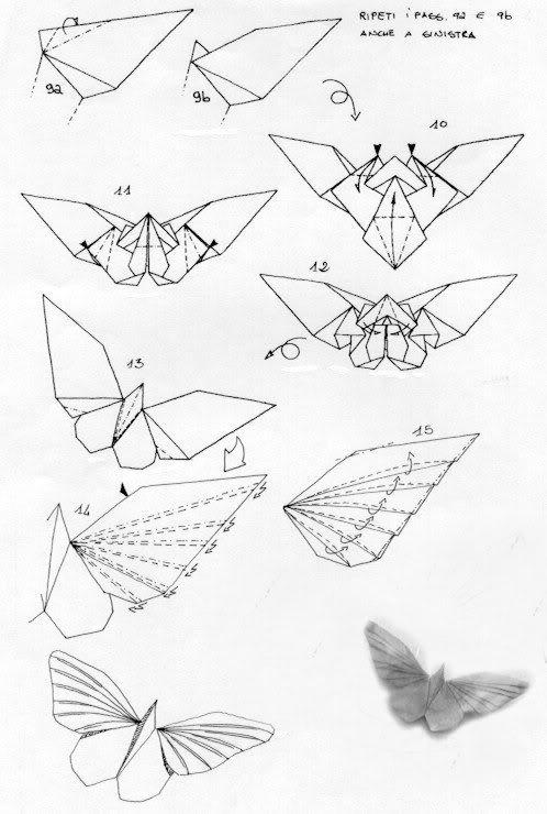 Kìa con bướm vàng 2357573221