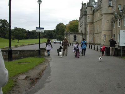 Pictures of our walks at cumbernauld dog walks Callenderparhouse2