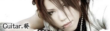 The GazettE Aoi