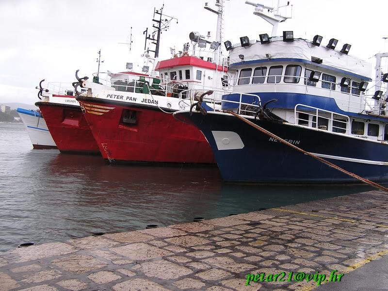 Ribarice PC010170
