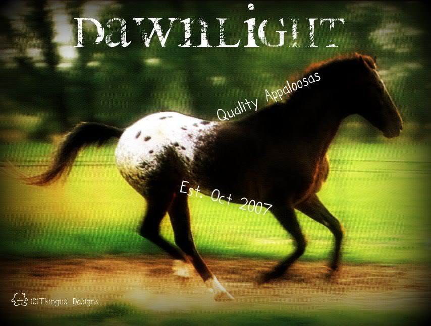 Your other graphics! Dawnlight1234