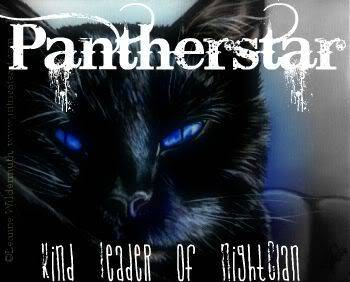 Your other graphics! Pantherstar1