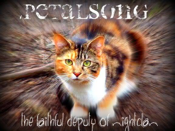 Your other graphics! Petalsong2