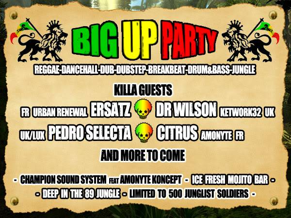 24/07/2010 - KILLA DISCO : THE BIG UP PARTY !!! Killa_big_up_party_verso_v2
