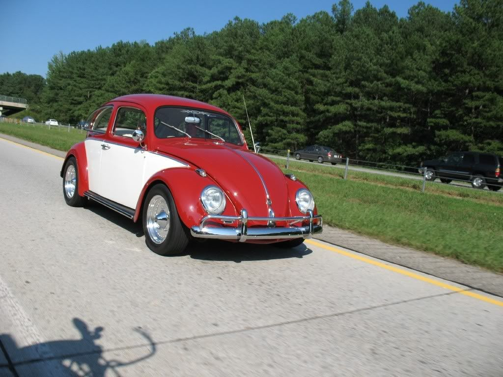 Bugs at the Branch Sept. 20th BugsattheBranchshow9-20-08113
