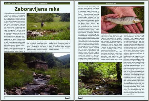 Spin & Fly magazin - Page 3 Rekaros