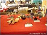 Après Japan Expo 2008 (photo et résumé) Th_ANIGetter-JE2008-004
