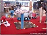 Après Japan Expo 2008 (photo et résumé) Th_ANIGetter-JE2008-038