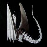 Dragon, Les comptes de Terremer Th_dragon-terremer_003