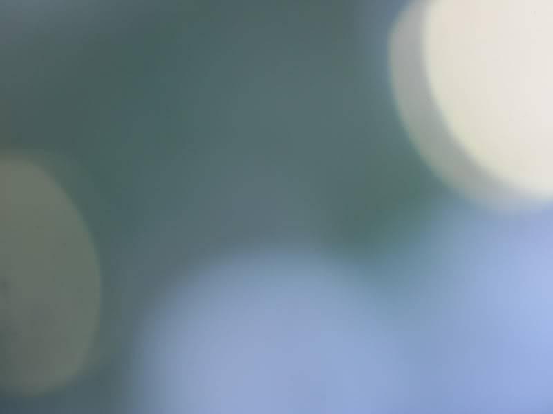 ||Galería de Texturas|| 301