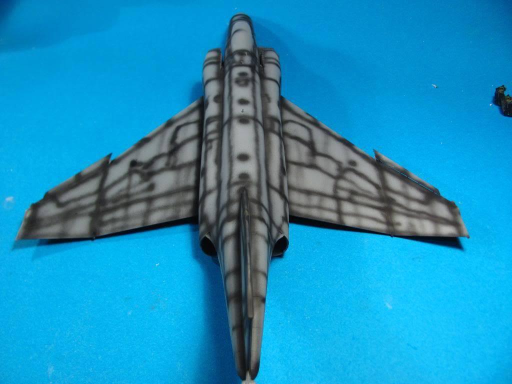 Pro Modeller F-4E PhantomII IRIAF 1/48 - Sida 7 IMG_1285