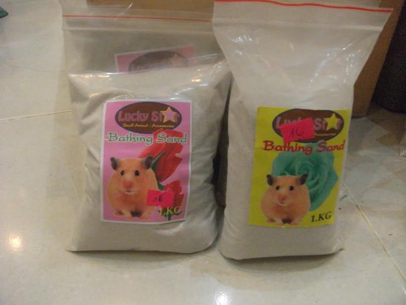 Cần Thơ - Chuột con petshop: thú cưng cần gả DSCF3649