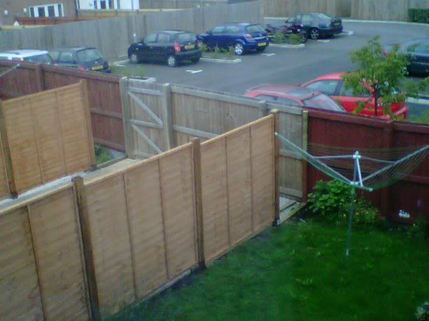 Our neighbours fence... 299536_10150352171413735_676823734_9607980_7224584_n