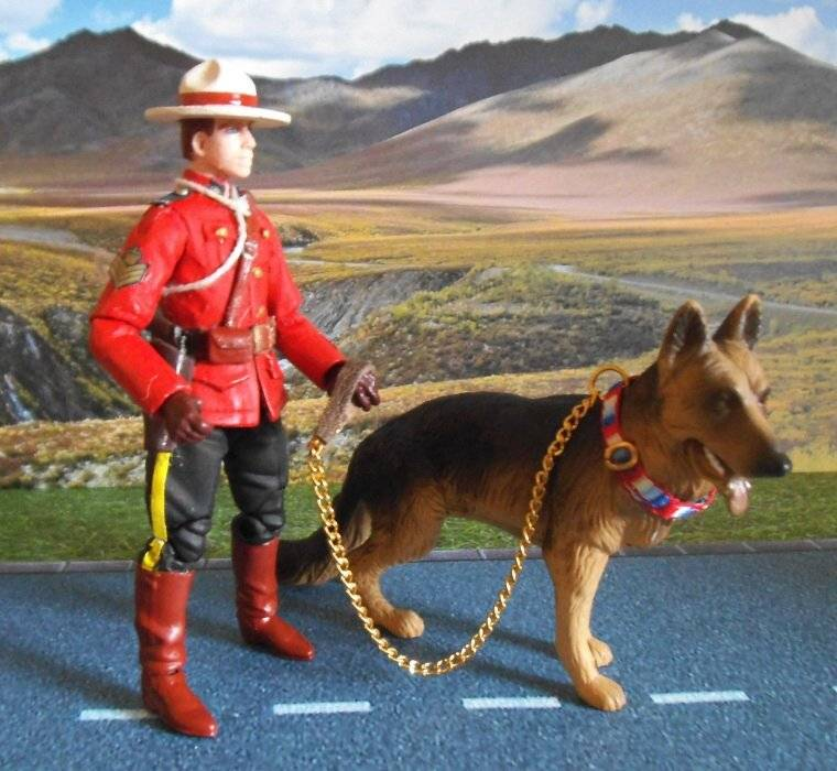 Royal Canadian Mounted Police RCMP03a