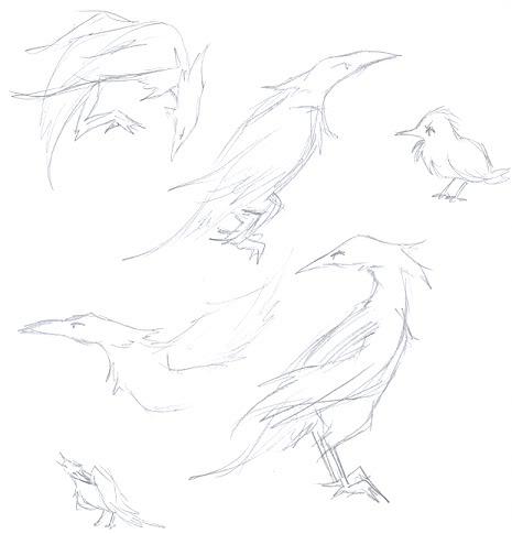 Sea Ravens. :D SeaRavenDoodles