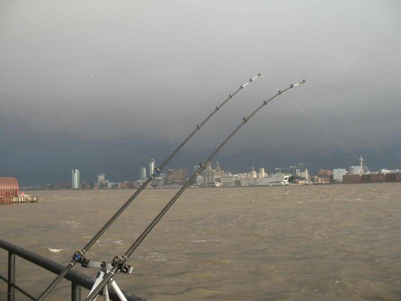 the mersey Picture072-1