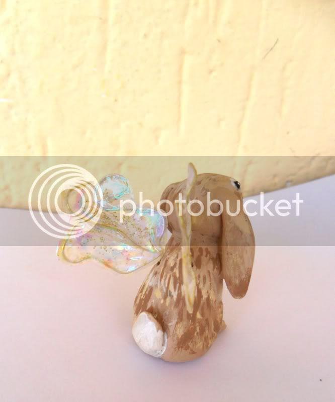 coniglietto fatato  SAM_0340