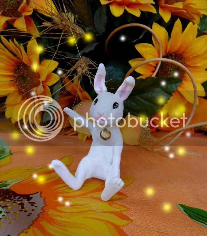 un saluto da un coniglietto fatato!! (uno nuovo<3 ) SAM_0350