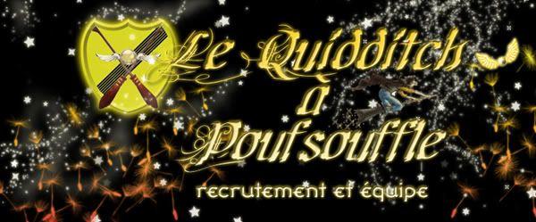 ~* Quidditch *~ Recrutquidd