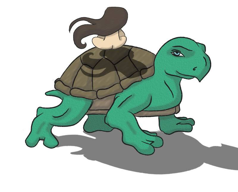 The Turtle and the Girl Girl_Turtle2