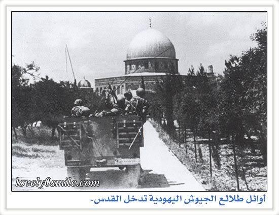 المذبحة الإسرائيلية للأسرى المصريين فى حرب 67 (فيديو ) 14