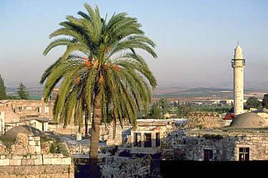 مدن فلسطينيه مع الصور 2-2