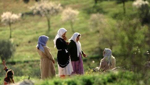 مدن فلسطينيه مع الصور 8-2