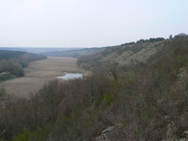 Raport Ilustrat - HAGIENI (CT) - Aprilie 2008 Habitat1