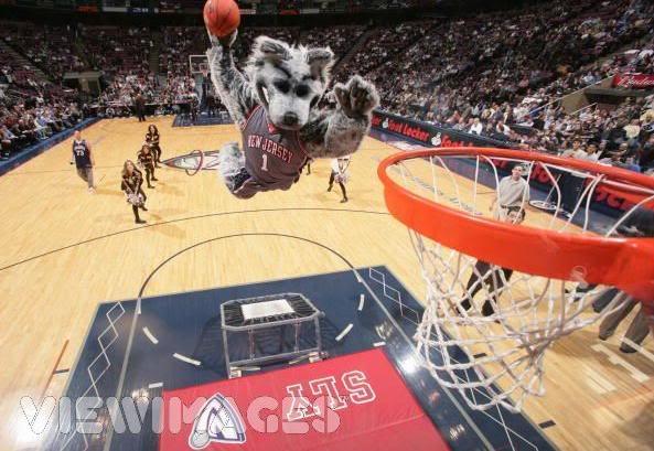Mascotas de equipos NBA Sly