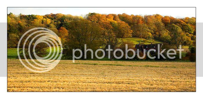 Autumnal Scene DSC_1783-01