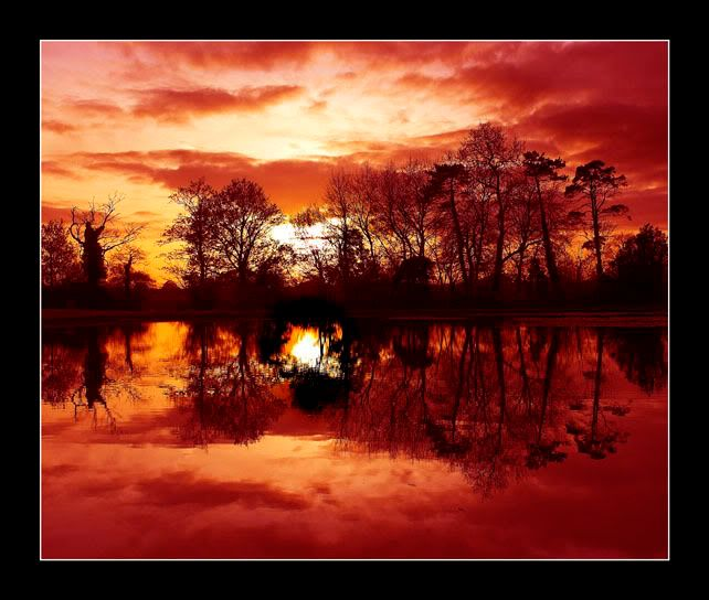 Sun set at Staunton Country Park DSC_1906-01B