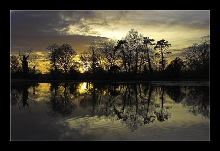 Staunton Park Sun set DSC_1930-01