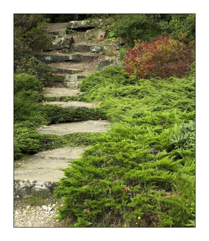 Stairway to Heaven Stepstoheaven