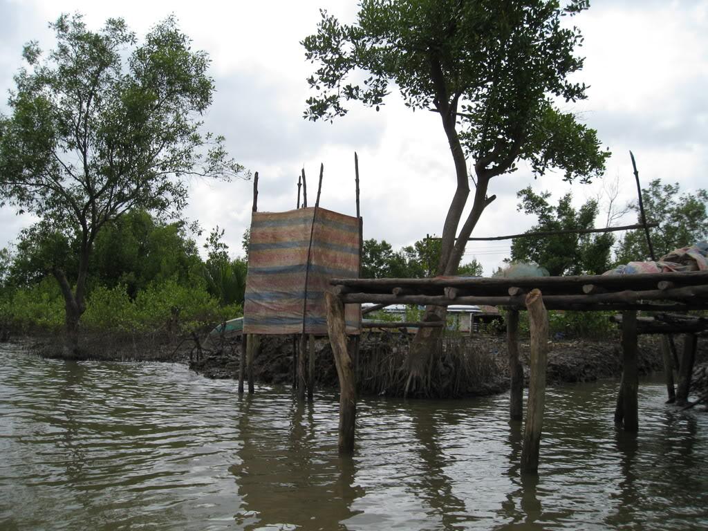 Ngôi nhà nhỏ trên đồng bằng sông Cửu Long IMG_7058
