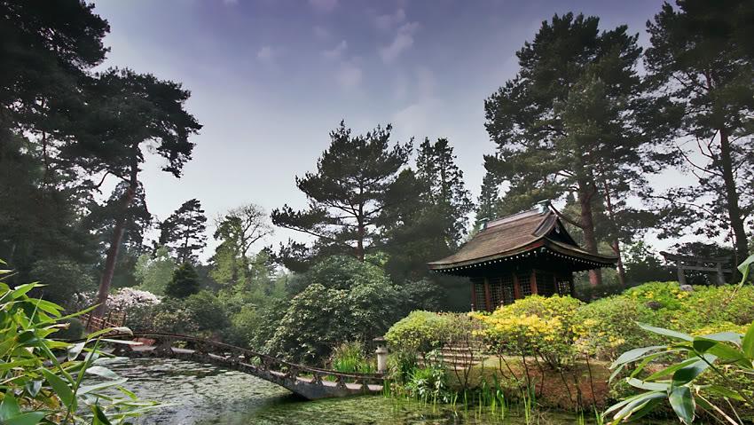 Silverwing Gardens Gardenarea1