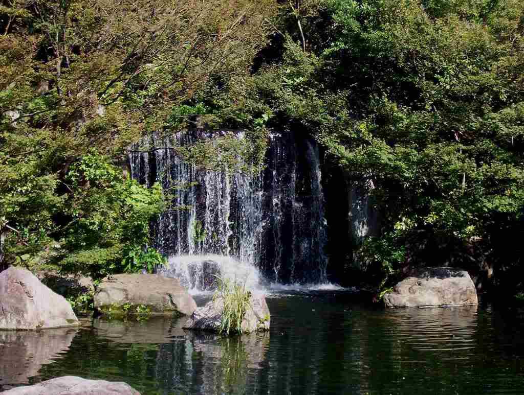 Silverwing Gardens Gardenpond