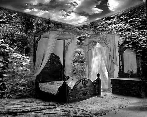 Shadow Dormitory 1111