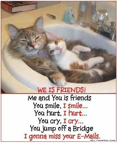 A little something to make you smile! Friendship