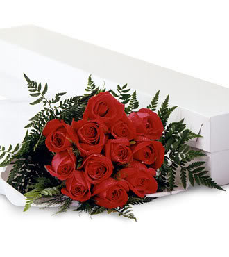 الورد الاحمر وسحر جماله..إإ 09098