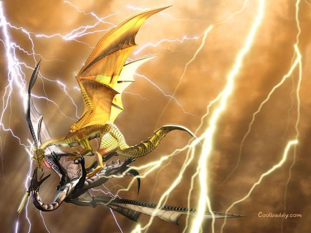 Dragon Master : Jared Blazon GoldVSBlackDragon