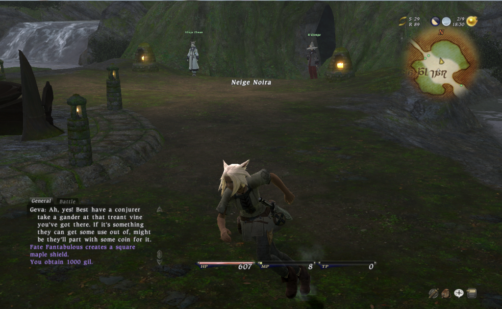 Screenshots FFXIVrun