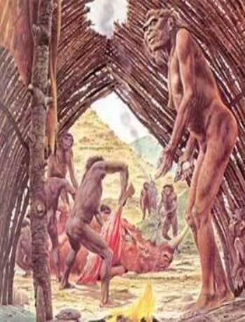 HOMINIDOS EN LA EDAD DE PIEDRA Erectus_vivienda_4-1