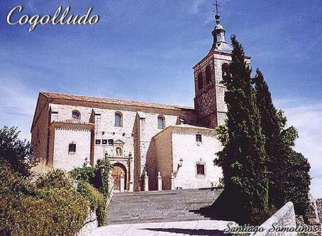 COGOLLUDO Cogolludo-3