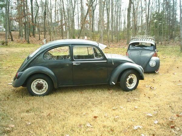 My 1966 VW! Ashleysbug