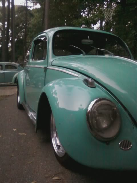1963 Beetle TheNewWheels
