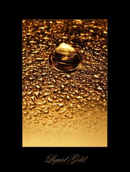 Volim zlatno Zlato