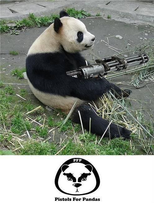 Image Pwnage! Pandas-need-guns