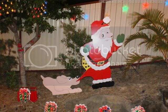 Xmas Lights 2009 by Simpsons Photographics DSC01292